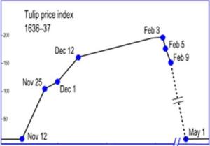 tulp graph 1636-37